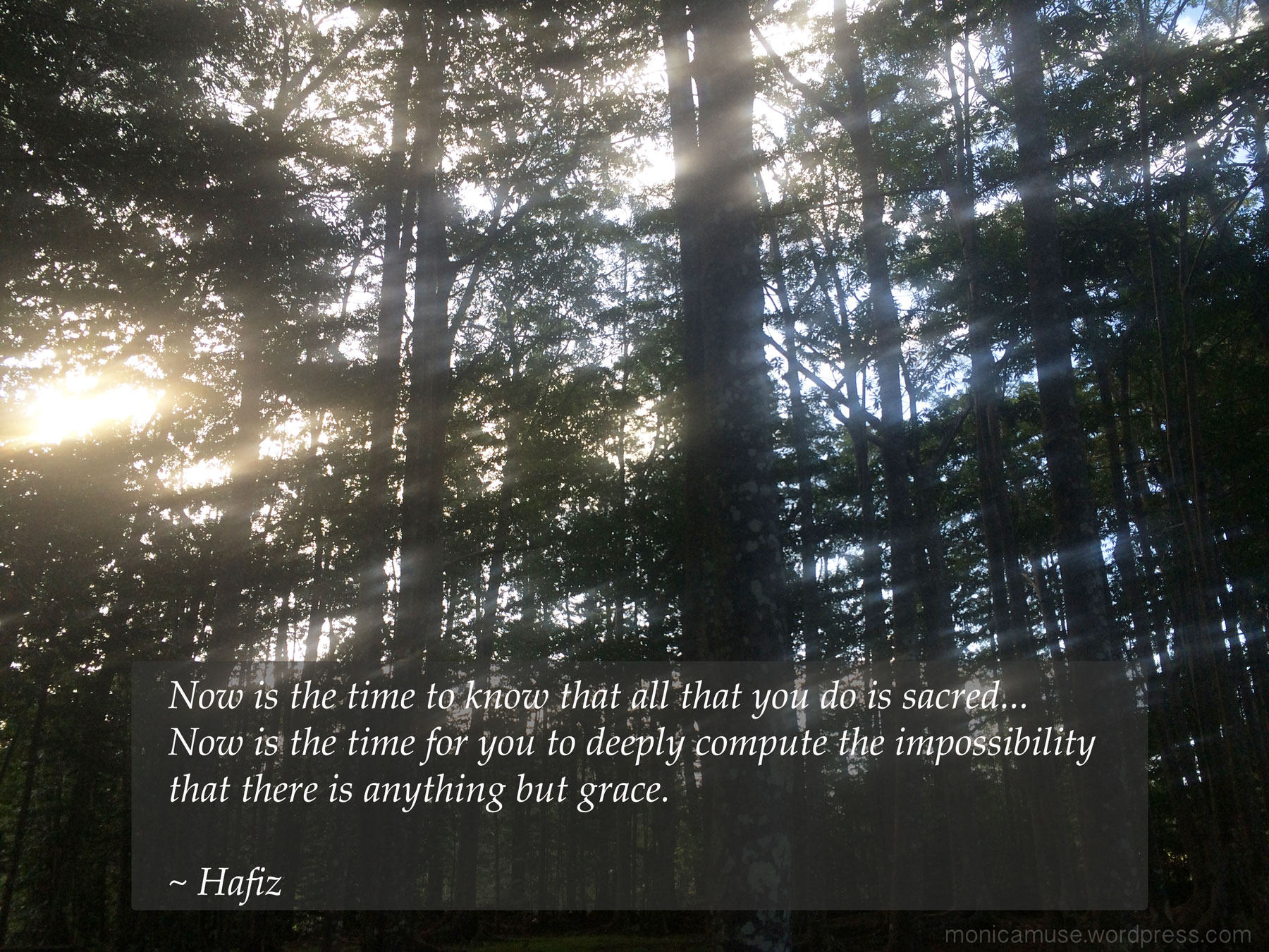hafiz quotes i wish i could show you - photo #34